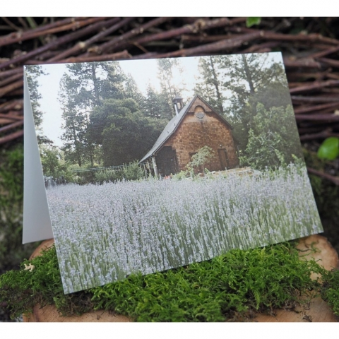 misc-greeting-card