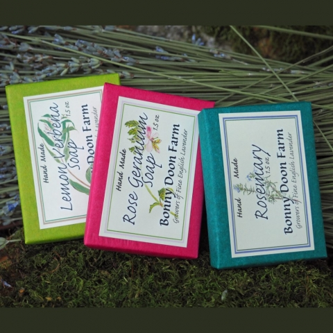 gift-three-soaps-4