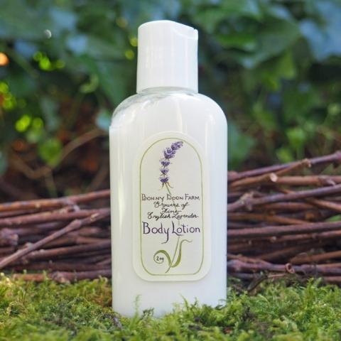 lavender-lotion-2-front