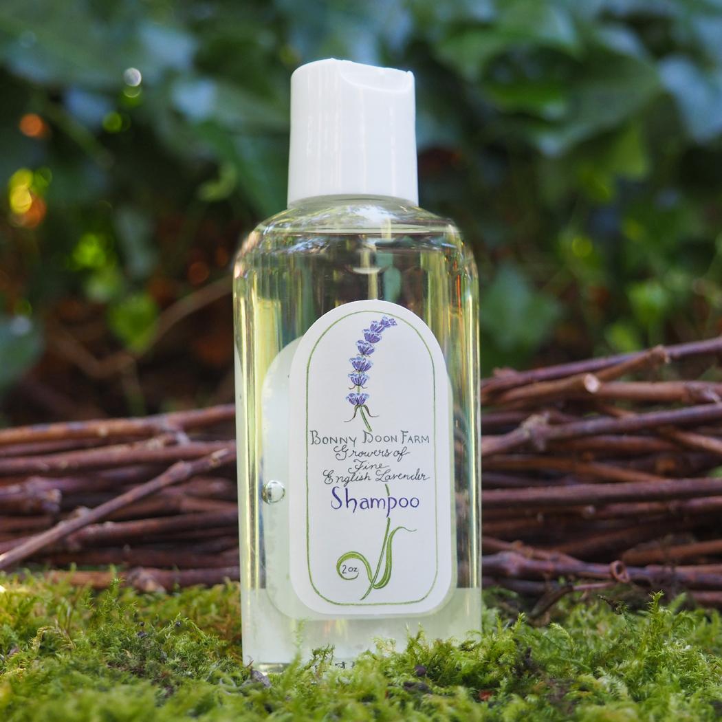lavender-shampoo-2-front